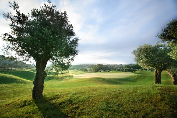 Westin Costa Navarino - The Dunes Course 4 - Golf - Greece