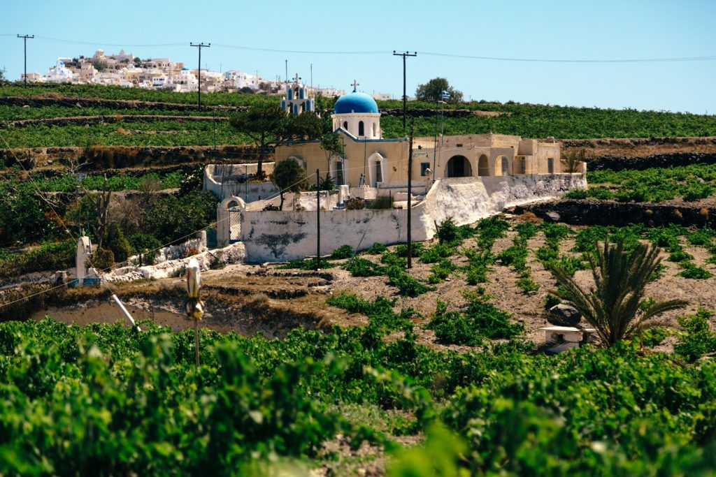 vedema-santorini-wine-making-experience-luxury-collection