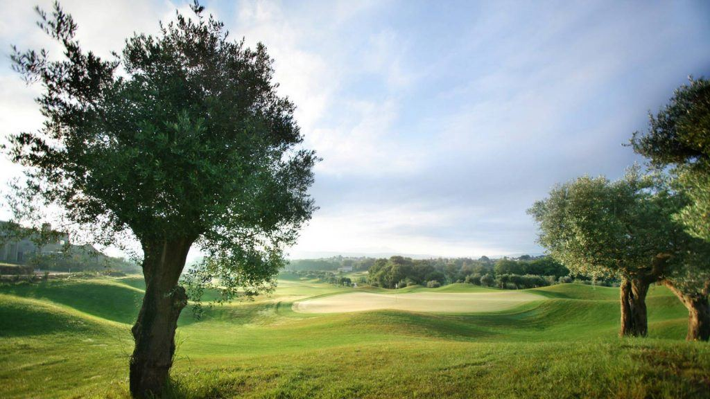 journey-greece-costa-navarino-golf-the-dunes-course-olive-trees