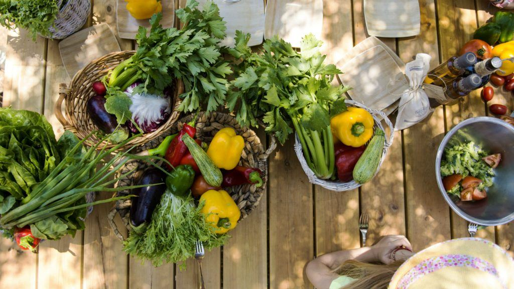 little gardeners activities costa navarino westin resort