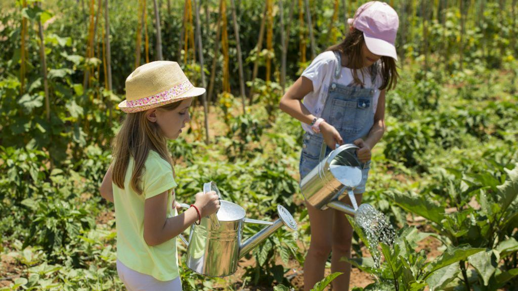 little gardeners activities costa navarino peloponese