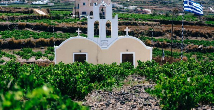 chapel surrounded by plants